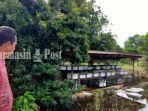 kepala-desa-sungai-durait-hulu-maseran-budi-daya-lebah-madu-babirik-kabupaten-hsu-27012021.jpg