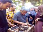 ketua-kelompok-pembudidaya-lebah-madu-kelulut-abdul-basith_20161007_163350.jpg