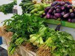 kini-harga-sayur-di-kalsel-kembali-normal.jpg
