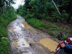 kondisi-jalan-di-kecamatan-halong-yaitu-desa-mauya-dan-desa-marajai_20180812_115634.jpg