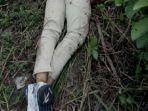 mayat-di-lokbaintan-kabupaten-banjar.jpg