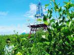menara-pantau-di-ekowisata-mangrove-pagatan-besar-kabupaten-tala-provinsi-kalsel.jpg