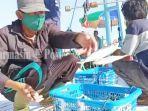 nelayan-saat-berada-di-pelabuhan-perikanan-batulicin-kabupaten-tanbu-kalsel-10062021.jpg