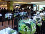 pameran-aquascape-di-atrium-q-mall-banjarbaru.jpg