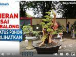 pameran-bonsai-jalanan-di-area-depan-stadion-sarabakaw.jpg