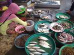 pedagang-ikan-di-pasar-lama-banjarmasin-alami-kekurangan-stok-sejak-seminggu-lalu.jpg