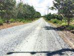 pembangunan-jalan-tanjung-seloka-berangas-di-kabupaten-kotabaru-kalsel-16062021.jpg