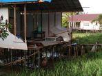 penampakan-bagian-belakang-rumah-komariah-pasca-diterjang-angin-puting-beliung.jpg