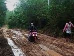 pengendara-yang-melintas-di-jalan-menuju-desa-aniungan-kecamatan-halong-k.jpg