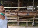penjual-kambing-di-kampung-arab-kota-banjarmasin.jpg