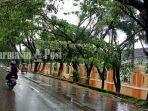 pepohonan-menjorok-ke-arah-tengah-jalan-veteran-martapura-kabupaten-banjar-kalsel-22112020.jpg