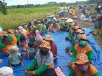 petani-di-kawasan-food-estate-kabupaten-pulang-pisau-kalteng.jpg