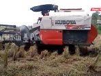 petani-menggunakan-combine-harvester-di-desa-tinggiran-darat-kabupaten-batola-sabtu-17072021.jpg