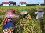 petani-panen-padi-di-desa-sungai-baring-kabupaten-hsu-kalsel-rabu-01092021.jpg