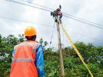 petugas-pln-saat-melakukan-inspeksi-jaringan-distribusi-listrik.jpg