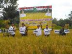 pj-bupati-kapuas-agus-pramono-didampingi-kadis-pertanian-anjono-bhakti_20180711_175256.jpg