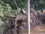 pohon-tumbang-di-kampus-ulm-banjarmasin_20170205_162516.jpg