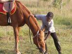 salah-satu-kuda-di-jabal-diamond-horse-riding-cempaka-banjarbaru.jpg