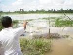 sawah-terendam-banjir.jpg