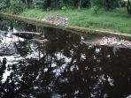 sejumlah-drainase-primer-atau-anak-sungai-di-sampit.jpg