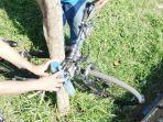 sepeda-yang-terkunci-di-pohon.jpg