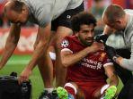 striker-liverpool-mohamed-salah_20180527_075831.jpg