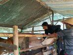suasana-pelayanan-pemeriksaan-kesehatan-sapi-di-desa-bingkulu-dua-hari-lalu-peternak.jpg