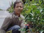 sugito-asal-pacitan-penjual-tanaman-hias-di-jalan-yos-soedarso-palangkaraya-kalteng-23122020.jpg
