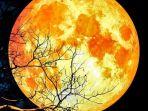 super-blue-blood-moon_20180201_095034.jpg