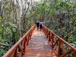 taman-wisata-alam-wta-pulau-bakut-yang-berada-di-bawah-jembatan-barito.jpg