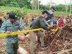 temuan-illegal-logging-di-tanahlaut.jpg
