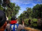 tim-saat-mengarungi-sungai-memantau-keberadaan-orangutan-di-desa-kayakah.jpg