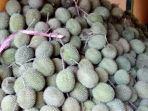 tumpukan-durian-desa-haruyan-dayak-hantakan-hst.jpg