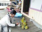 wisata-kalsel-pengunjungi-menikmati-durian-di-pulau-burung-kabupaten-tanbu-11092021.jpg