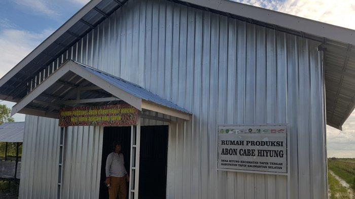 Bantu Petani Desa Hiyung Tapin, Pemerintah Siapkan Penampungan 6 Ton Cabai Basah