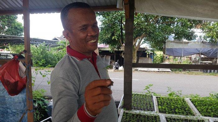 Pedasnya Cabai Hiyung Tapin Mengundang Perhatian Pengusaha Malaysia Menjalin Kemitraan