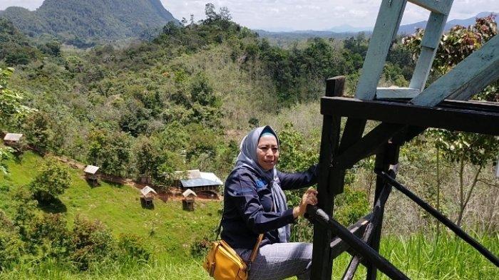 Wisata Kalsel,  Menanti Sunrice Harus Datang Sejak Subuh di Wisata Kampung Bambu