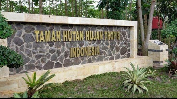 Taman Hutan Hujan Tropis Indonesia di area perkantoran Pemprov Kalsel