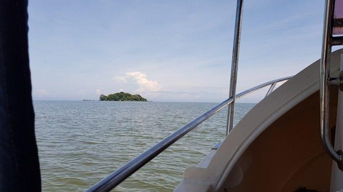 Wisata Kalsel Pulau Datu di Kabupaten Tanahlaut, Menikmati Indah Pulau Sekaligus Ziarahi Ulama Besar - wisata-kalsel-pulau-datu-desa-tanjungdewa-kecamatan-panyipatan-kabupaten-tanahlaut-dari-kejauhan.jpg