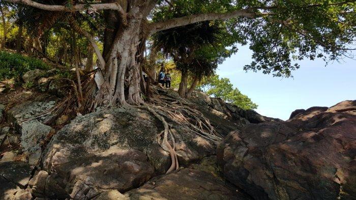 Wisata Kalsel Pulau Datu di Kabupaten Tanahlaut, Panorama Alam Pulau Jadi Spot Swafoto Menawan - wisata-kalsel-pulau-datu-di-kabupaten-tanahlaut-dengan-alam-pulau-yang-menawan-02.jpg