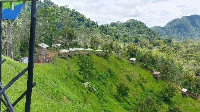 Wisata Kalsel, Berkemah di Kampung Bambu, Pengujung Lebih Mudah Lihat Hamparan Awan