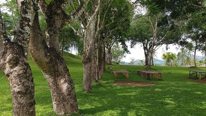 Panorama elok wisata Kalsel Taman Permana Pelaihari Kabupaten Tanahlaut yang menyuguhkan savana luas nan hijau dan semilir angin menyegarkan.