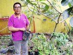 andi-pengelola-agrowisata-meek-farm-banjarbaru-memperlihatkan-bibit-durian-yang-dijualnya.jpg