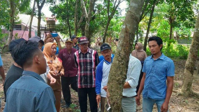 Profil Posyantek Karya Gemilang Desa Benua Tengah Tala Kalsel