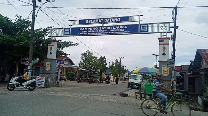 Melihat Kampung Sayur Laura, Ada Kampung Sayur di Banjarbaru