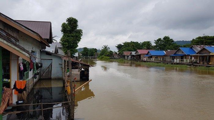 Wisata Kalsel Desa Panjaratan di Kabupaten Tanahlaut, Hanya Belasan Menit dari Kota Pelaihari - wisata-kalsel-permukiman-warga-desa-panjaratan-di-kabupaten-tanahlaut-di-kawasan-rawa.jpg