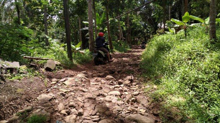 Potret keluarga miskin di Kabupaten Pandeglang - Akses jalan rusak menuju tempat tinggal keluarga miskin bernama Rusdiansyah di pedalaman hutan di Kampung Cimuncang, Desa Sudimanik, Kecamatan Cibaliung, Kabupaten Pandeglang, Sabtu (27/3/2021).