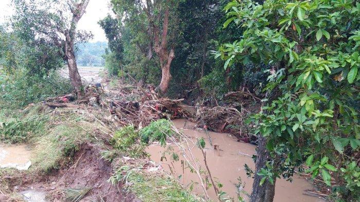 Sungai Ciasem Meluap, 4 Hektare Sawah di Kabupaten Serang Gagal Panen, Jembatan Roboh