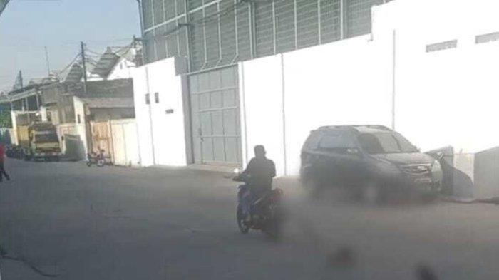 Seekor Anjing di Tangerang Diseret Pakai Sepeda Motor Sejauh 6 Kilometer, Diduga untuk Dikonsumsi