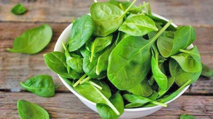 Sederet Bumbu Dapur Sampai Sayuran Ini Dapat Bantu Menurunkan Kolesterol Tinggi